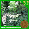 100%Pure black cohosh root extract/Triterpene2.5%-8.0% specially for your family health