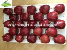 leading manufacturer huaniu apple