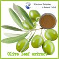 El precio de fábrica clave de producto de suministro natural de hidroxitirosol 20% superior calidad de la hoja de oliver p. E.