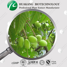 OEM High Quality Antioxidant Olive Leaf Extract