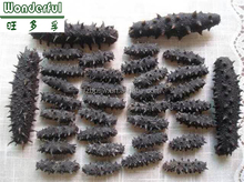 LOWEST PRICE OF DRIED SEA CUCUMBER WITH HIGH QUALITY