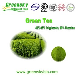 Natural 40%~98% Tea Polyphenols Green Tea Extract