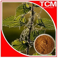 nettle plant extract powder manufacturer/Sting nettle ratio extract 5:1-50:1