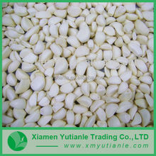2015 High quality wholesale fashion dehydrated natural garlic