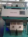 Alta velocidad de procesamiento de datos 2014Newest tipo Betelnut Semillas, almendra, Pino semilla, máquina de clasificadora de color