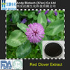 Plant Extract Total Isoflavones 8% HPLC Red Clover P.E.