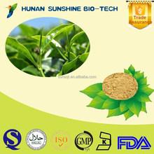 Organic Green Green Tea Extract P.E. tea polyphenols EGCG/ Green Tea Extract Powder