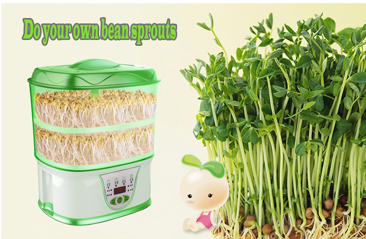 bean sprout maker