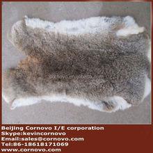 Fctory price rex rabbit plate manufacturer