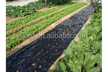 Mulch Film For Agriculture