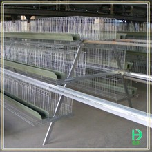Agricultural equipment layer cages for kenya farm,fancy bird cage for sale