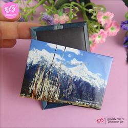 2015 hot selling japan souvenir custom fridge magnet for fridge Decoration