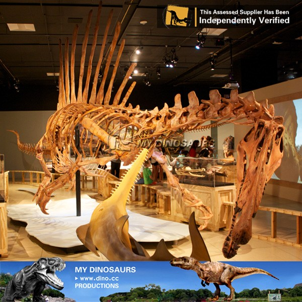 spinosaurus skeleton 2.jpg