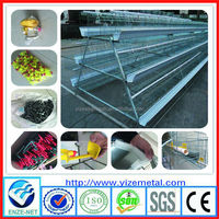alibaba express Chicken Cage Drinking Feeding System