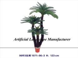 cycas revoluta palm tree with combination for home/hotel/park landscaping decoration