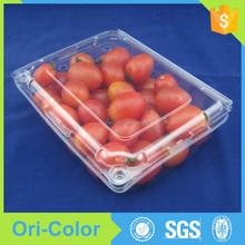 Hinged Fruit Packing Box