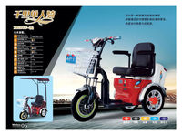 Popular Convenient High Quality Taxi Passenger TElectric Tricycle With Simple Roof