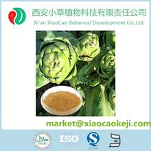 100% Natural de alcachofa en polvo con Cynarin