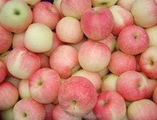 2015 royal gala apple/fresh fruit china/ Fresh Red Delicious Apples