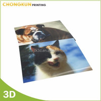Promotion Wholesale of Lenticular 3D Pictures
