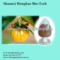 china proveedor de puro garcinia cambogia hca muestras gratis
