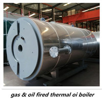 CE BV ASME certification plastic industrial used Cheap and fine gas oil fired thermal oil boiler