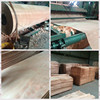 /product-gs/4-7-abcd-grade-thin-veneer-okoume-wood-face-veneer-for-plywood-in-sale-60292002996.html