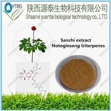 high puity natural panax notoginseng extract total saponins