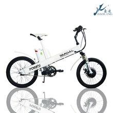 Seagull,20''10ah front wheel electric racing bike motor