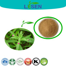 Factory Offer Epilobium Angustifolium Extract, Willow Herb Extract Powder 4:1 10:1 20:1