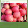 fuji apple fruit packaging in boxes wholesale prices apple fruit