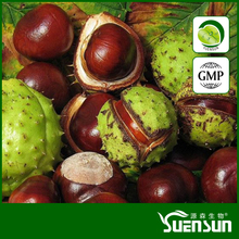 GMP supply Horse Chestnut Extract