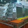 High quality chicken breeding cage/ multi-tier chicken cage