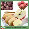 Wholesale Prices Fuji Apple