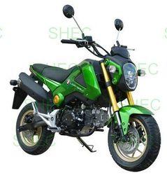 Motorcycle cruiser chopper