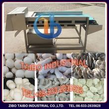 Eco-Friendly electric mushroom cutter machine / fruit salad cutter machine / apple cutter output 500-600kg/h