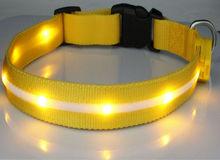 Waterproof LED Flashing Dog Collar