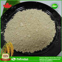 OEM Organic Brown Rice Protein powder for nutritional supply