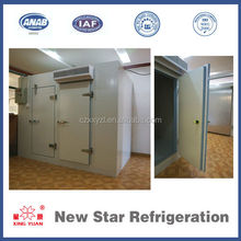 Chicken/beef/ice block/ fishes/ fresh flower CA storage cold room with sandwich panels