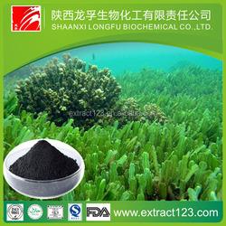 Manufacturer sales seaweed extract fertilizer