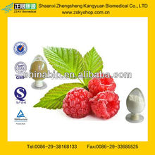 GMP Factory Supply Raspberry Ketone Supplement