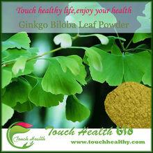 ginkgo biloba leaf powder.dried ginkgo biloba leaves