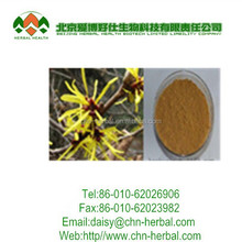 100% Natural Plant Extract Witch Hazel P.E. 4:1