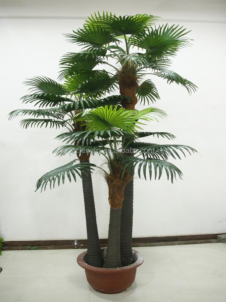 2015 new hot vente en gros d coratif int rieur ext rieur for Type de palmier exterieur