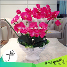 european style indoor fushia butterfly orchid decorative with resin pot