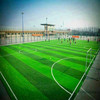 Artificial grass/ Synthetic lawn for football field