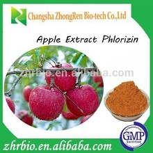 high quality Apple peel extract Phlorizin