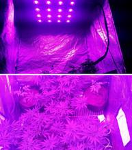 LED grow lights,led grow light spider 16 cob 1440w ,spider led plant lights,hydroponics