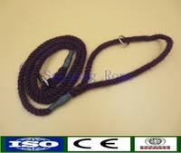 dog leash with competitive prices