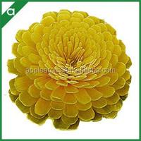 Yellow Dyed Handmade Chrysanthemum Sola Flower for Fragrance Diffuser